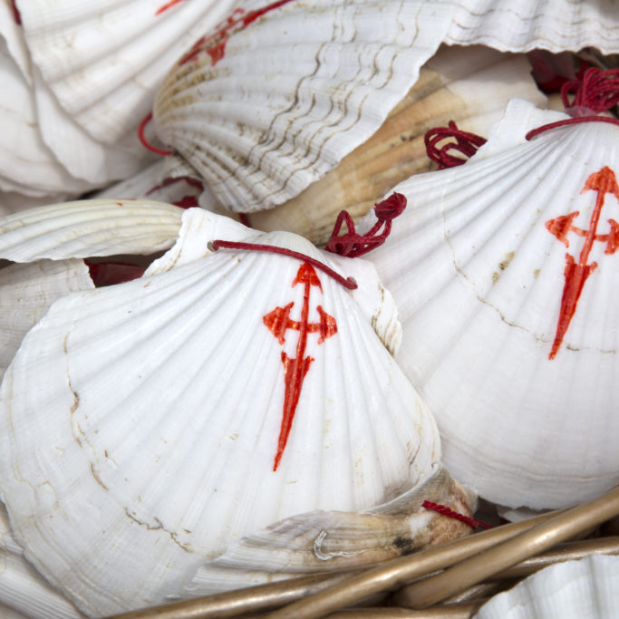 Shell Symbol from Camino de Santiago, Galicia; Spain