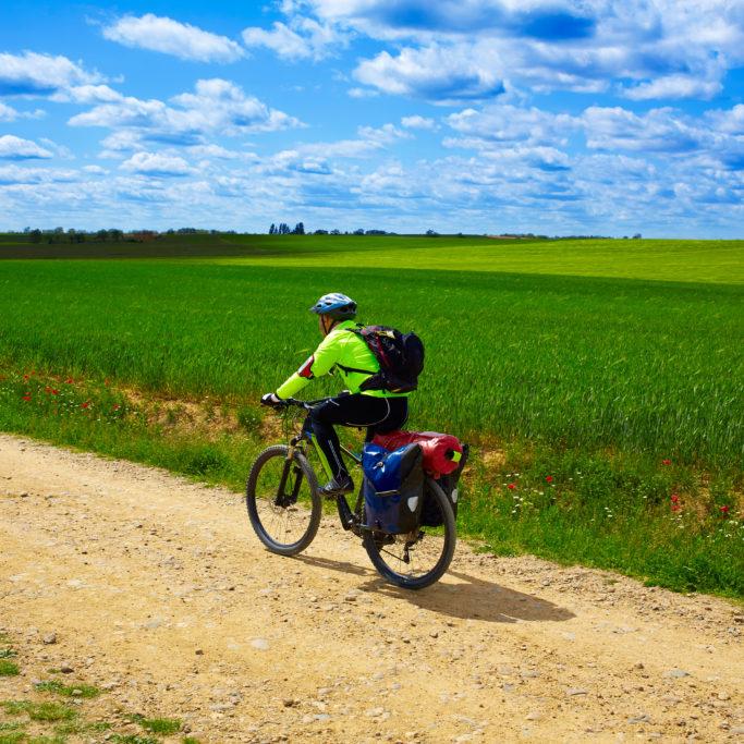 Biker on The Way of Saint James in Castilla Leon cereal fields of Spain