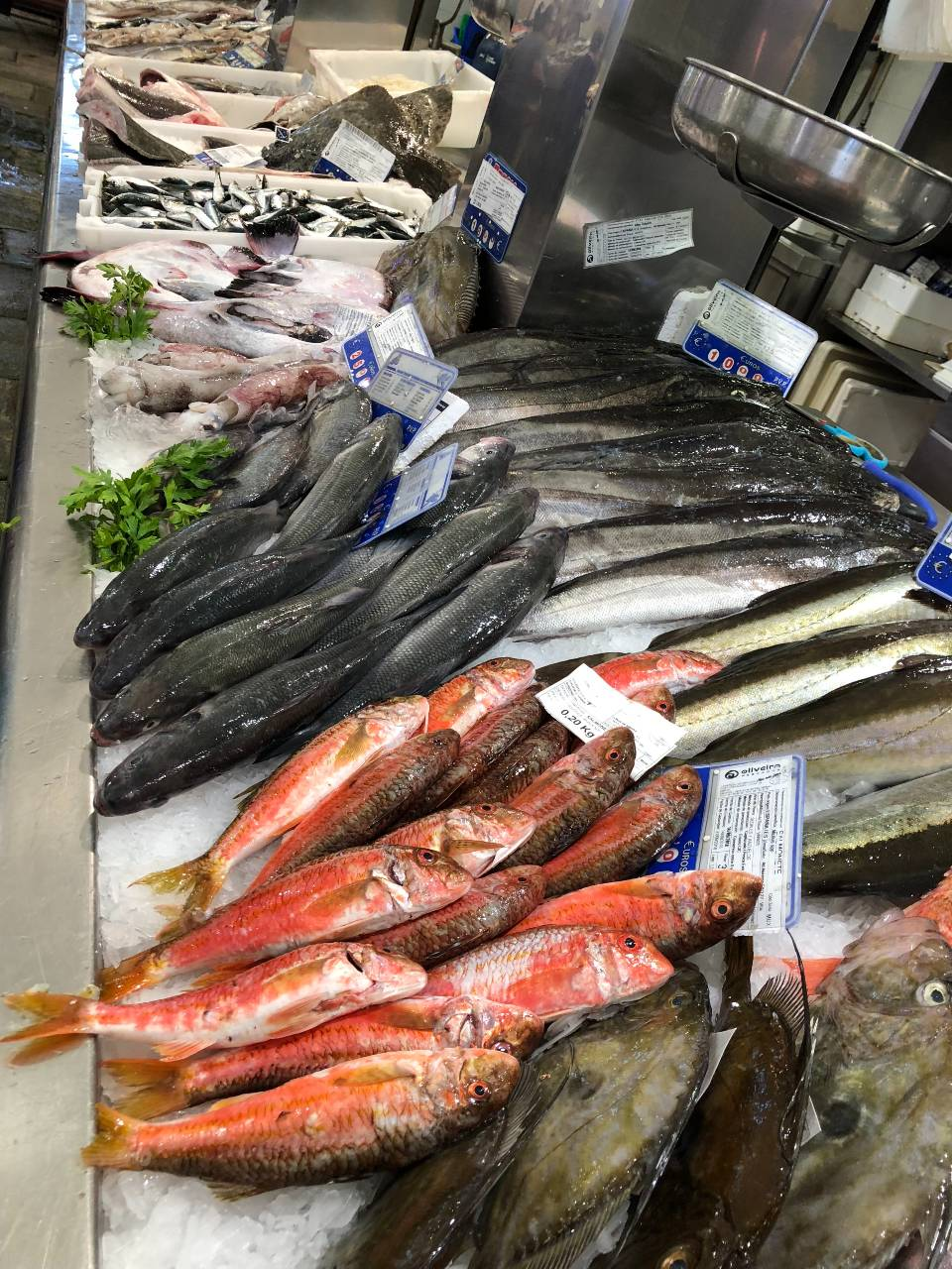 frischer Fisch Mercado de Abastos